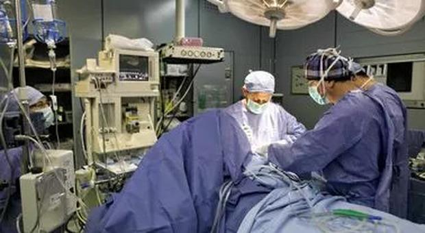 Tumore addominale di 24 chili rimosso al Regina Elena. La paziente di 74 anni sta bene