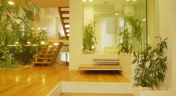 immagine Separè in bambù: ecco come usarlo e quale scegliere