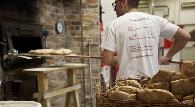 Pane in Italia: 41 kg l'anno a testa, il più consumato è quello di farina bianca