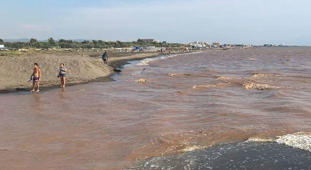 Invasione di alghe sul litorale, turisti in fuga dalle spiagge. Arpa: «Analisi in corso»