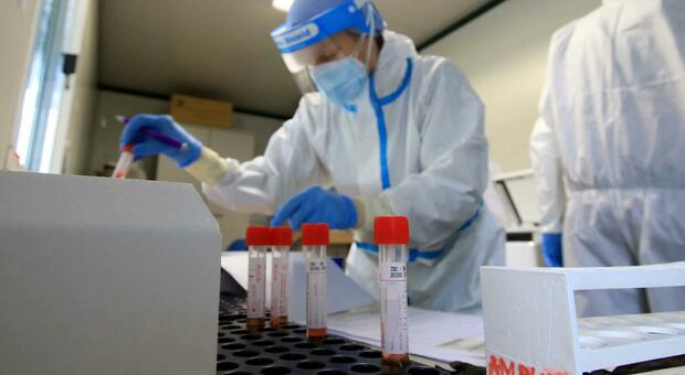 La Cina testerà migliaia di campioni di sangue di Wuhan per scoprire l'origine del virus