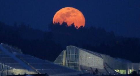La primavera arriva oggi con la superluna piena: addio inverno, l'equinozio è un giorno prima