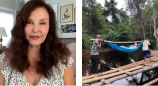Ashley Judd, l'attrice intrappolata nella giungla in Congo per due giorni: «Ho rischiato di perdere la gamba»