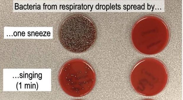 Coronavirus, cosa vuol dire non indossare la mascherina? Ecco l'esperimento che bisogna vedere