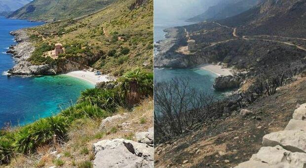 Riserva dello Zingaro distrutta dalle fiamme: le foto prima e dopo l'incendio