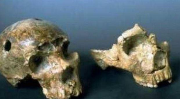 Il primo uomo di Neanderthal arrivò a Roma 250 mila anni fa: svolta nel mondo dell'archeologia