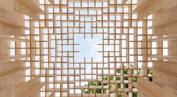 immagine The Forests of Venice alla Casa dell'Architettura