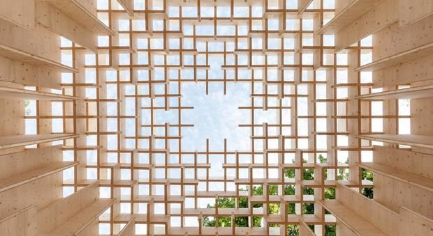 immagine Il futuro è del legno: alla Casa dell'Architettura la mostra The Forests of Venice