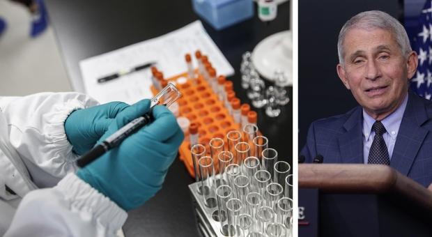 Vaccino Covid, l'immunologo americano Fauci: «Prime dosi tra il 12 e 15 dicembre, presto anche in Italia»