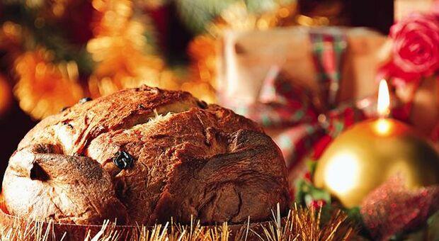 Coldiretti: preoccupano limitazioni su vacanze in montagne e cenoni natalizi