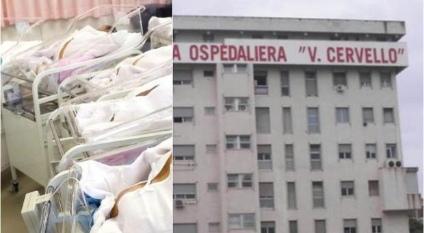 No vax positiva partorisce a Palermo e fugge aiutata dal marito: neonato lasciato alla nonna