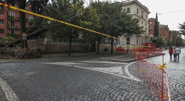 Roma, giardinieri privati per l'emergenza: la responsabile del Verde è in ferie