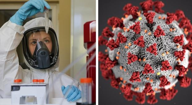 Coronavirus, il ministero della Salute: «Il periodo di incubazione può superare le 3 settimane»