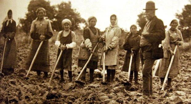 Da Ostia all'Agro pontino, quando il Lazio sconfisse la malaria con il lavoro dei romagnoli e degli emigranti del Nord est