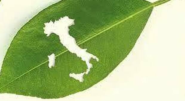 Il post covid e la ripartenza, in Italia crescono le eccellenze e la sostenibilità nelle aziende