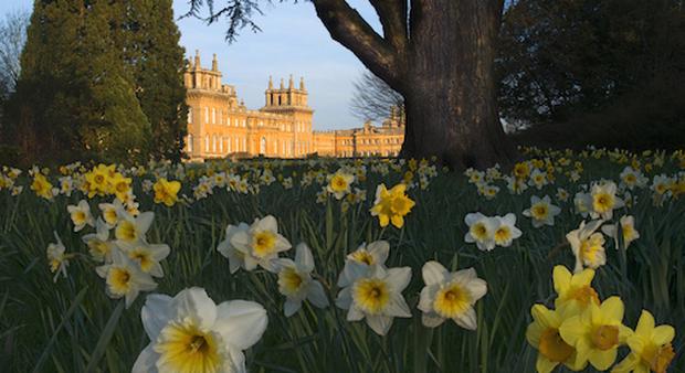Primavera In Gran Bretagna Alla Scoperta Dei Suoi Giardini Più Belli
