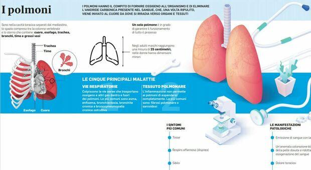 Covid e non solo, proteggere i polmoni tra vaccini e un corretto stile di vita