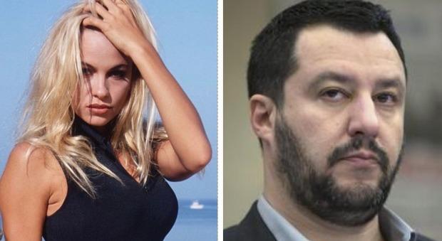 Lo scontro tra Matteo Salvini e Pamela Anderson