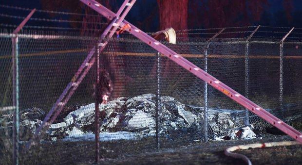 Aereo precipita alle Hawaii, 11 morti: sul bimotore un gruppo di paracadutisti
