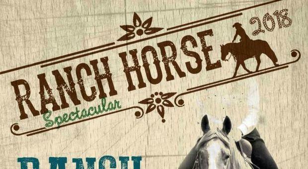Equitazione da ranch il 28 ottobre a Tor San Giovanni: torna il vecchio West con la potenza dei quarter horse