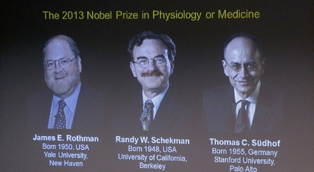 James E. Rothman, Randy W. Schekman e Thomas C. Sudhof