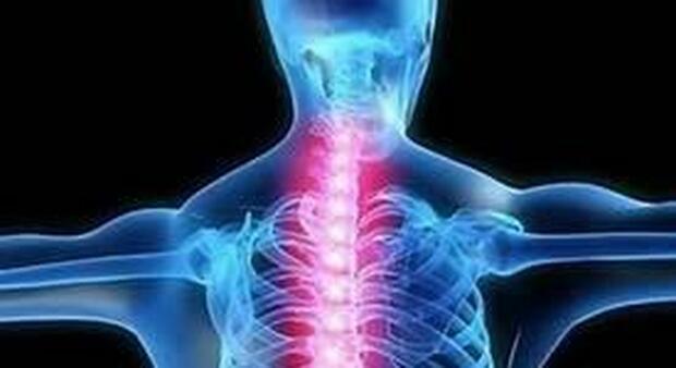 Il Covid aumenta il rischio di fratture ossee? Ecco lo studio che dimostra la correlazione