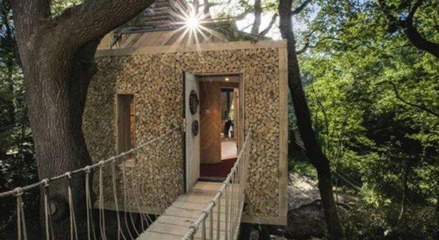 immagine In Gran Bretagna la casa sull'albero più lussuosa al mondo