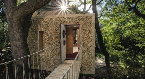 immagine Gran Bretagna, ecco la casa sull'albero più lussuosa del mondo