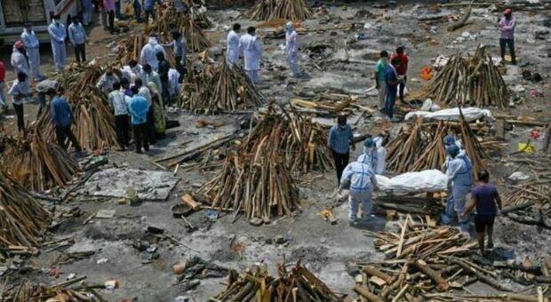 Covid in India dati falsati: «Morti che i nuovi contagi rischiano di essere almeno il doppio»
