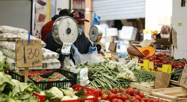 Roma, «Approvare subito il piano sugli sprechi alimentari»: associazioni protestano contro il Comune