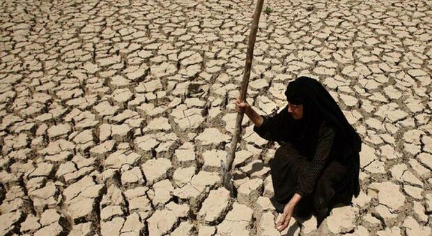 Riscaldamento globale: «Raddoppiati i giorni a 50 gradi dagli anni '80», lo studio della Bbc