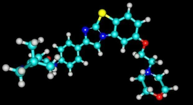 Leucemia scompare in 6 pazienti grazie cellule tech: studio italiano su malati stadio avanzato