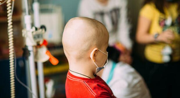 Sos dal cardinale Eijk, in Olanda un progetto di legge per autorizzare l'eutanasia sui bambini fino a 12 anni