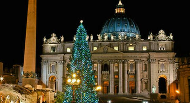 Vaticano, il Covid non ferma l'arrivo del grande albero di Natale abbattuto in Slovenia