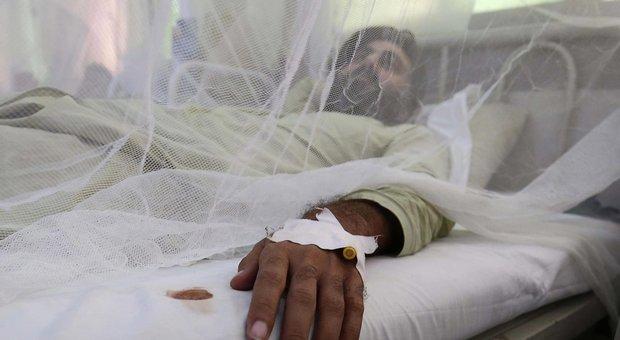 Dengue, scatta l'allarme a Prato dopo un nuovo caso. Il sindaco: «Disinfestare»