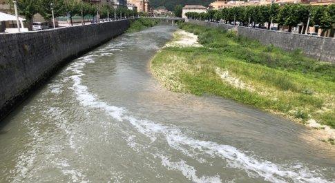 Moria di pesci nel fiume Liri, ecco cosa ha trovato l'Arpa: elevate concentrazioni di metalli pesanti e scarichi fognari