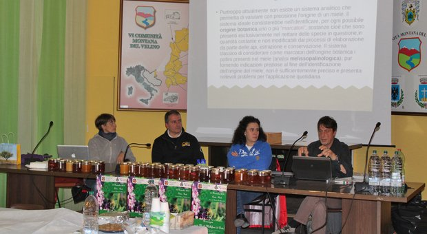 Un momento della seconda rassegna provinciale dei mieli millefiori della provincia di Rieti (Foto GIORDANO FOFFO)
