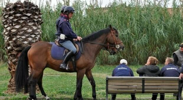 Polizia a cavallo tra i cittadini