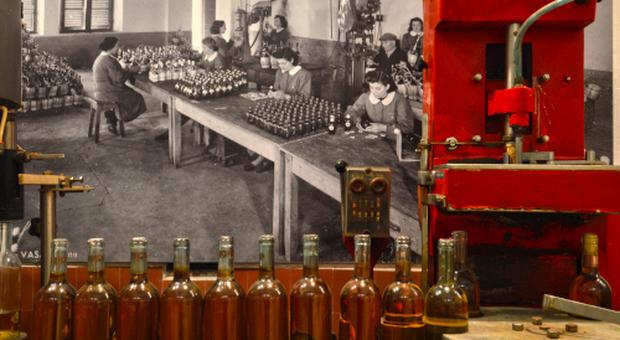 Castiglione in Teverina: Museo del vino