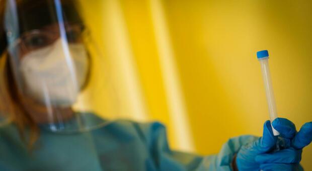 Green pass, i test molecolari su matrice salivare sono validi per ottenere la Certificazione verde