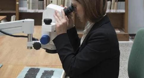 La ricercatrice Valeria Piano