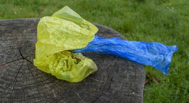 Roma, rimossi i cestini dai parchi, i cittadini protestano: «Così rifiuti ovunque»
