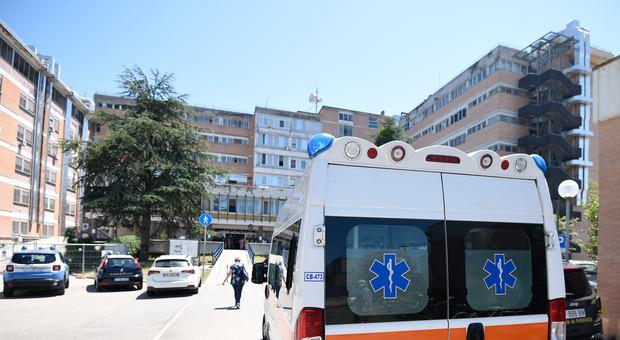 Donazione organi, un pontino presidente dell'Aido Regione Lazio