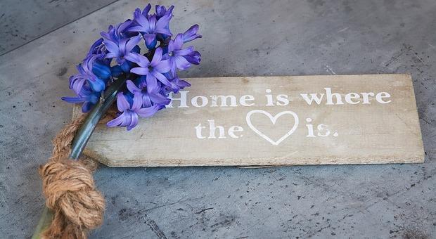 Come avere una casa profumata idee e trucchi per dire addio ai cattivi odori - Cattivi odori in casa ...
