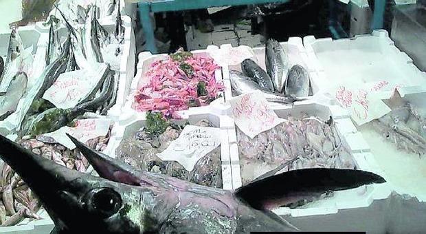 Roma, pesce senza etichetta al mercato