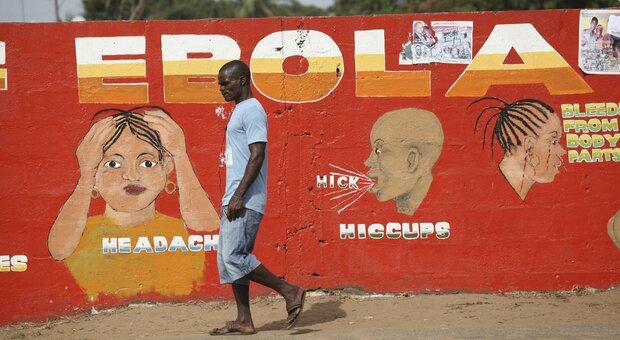 Ebola, la Guinea dichiara nuova epidemia: tre morti, Oms pronta a inviare vaccini