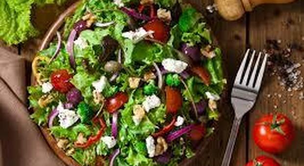 Scuola a Roma, M5S vara il menù vegano: diete speciali per le diverse religioni