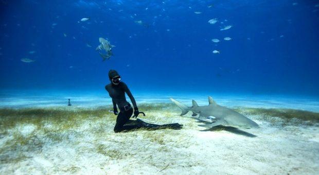 L'Ocean Film Festival arriva a Roma: dal 24 ottobre vanno in scena i migliori film dedicati al pianeta blu