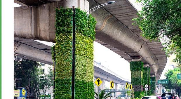Città del Messico, i piloni della sopraelevata diventano giardini verticali