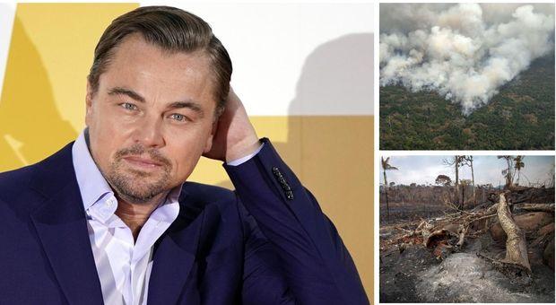 Amazzonia, DiCaprio dona 5 milioni di euro: «I polmoni della Terra sono in fiamme»